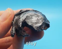 127.4g Sikhote-Alin Meteorite Shrapnel from Russia (1947) RARE