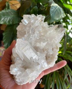 2-1 2 LBS Arkansas Clear Quartz Cluster, Large and Mine Fresh, 1110.20 Grams, 1.42 LBS, CR6276