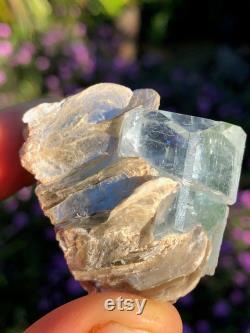 Aquamarine Crystal Specimen with Muscovite, AQS3