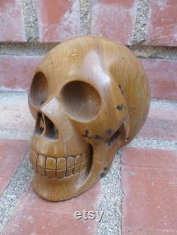FREE SHIPPING 3lb Large Jasper Skull, Crystal Skull, Yellow Jasper