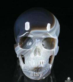 Huge 5.1 Agate Carved Crystal Skull