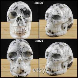 MOONSTONE Crystal Skull 5 Skull Decor, Memento Mori Gothic Home Decor Halloween TSG