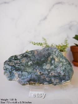 Moss Agate Crystal Polished Slab, Slice, Natural Stone, Altar, Home Decor, Gift