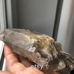 Phenomenal Enhydro Semi Translucent Elestial Fenster Quartz With Babies And Silverish Matt Elestial Side. Well Structured. Power Crystal.