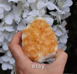 Unique Raw Citrine Crystal Stone Druzy Piece 435g (Beautifully Gift Wrapped)