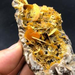 Vanadinite-Beautiful natural Red Vanadinite Crystal on Matrix Mineral Specimen Morocco A1653